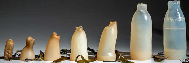 Cet homme a inventé des bouteilles biodégradables en algues