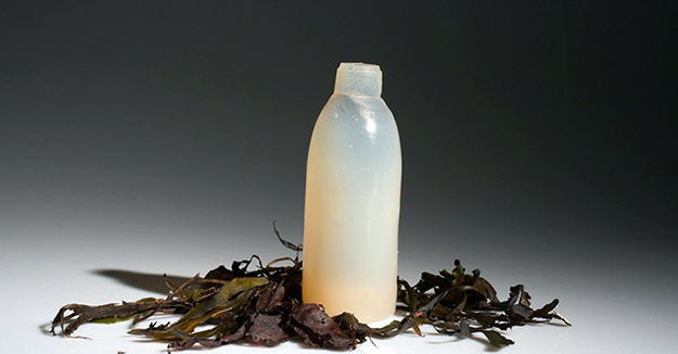 ari jonsson bouteilles algues