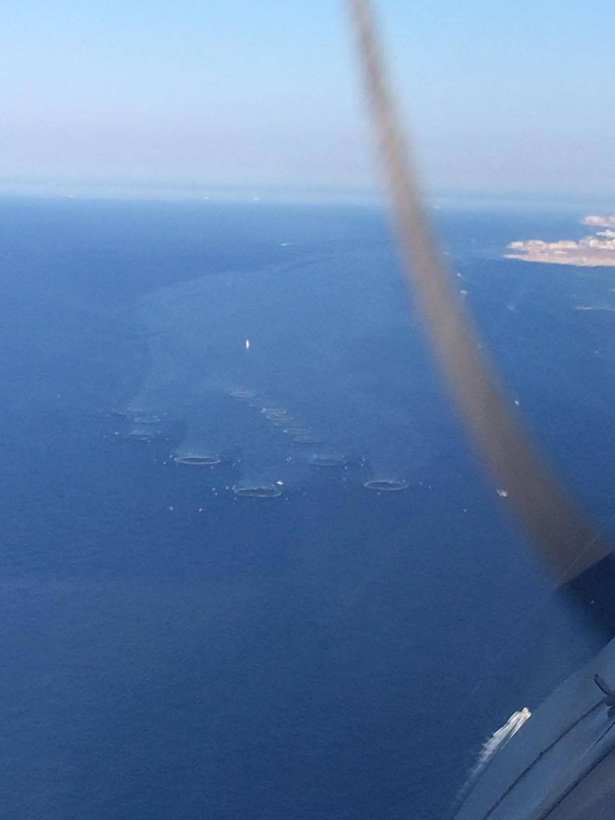 ferme aquacole pollution méditerranée Malte