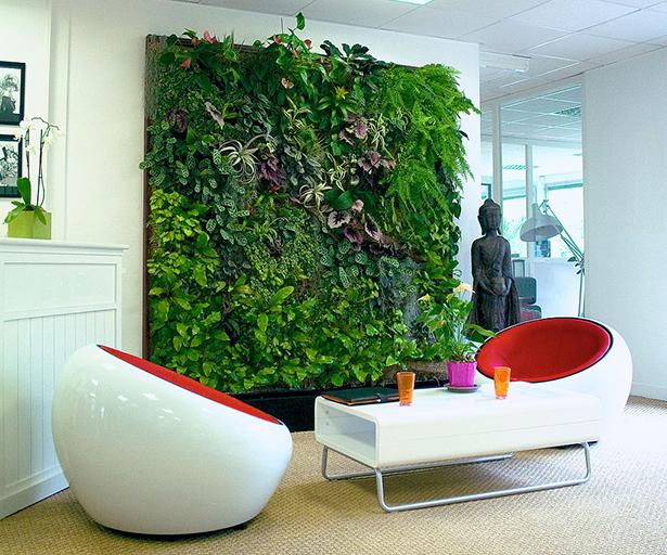 plantes au bureau, mur végétal, réduction du stress au travail