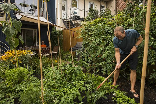 agriculture urbaine emplois
