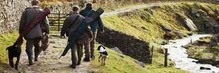 Biodiversité : la région  Auvergne-Rhône-Alpes privilégie les chasseurs