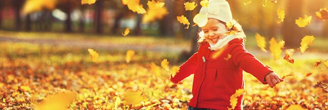 couleur d'automne, feuille automne