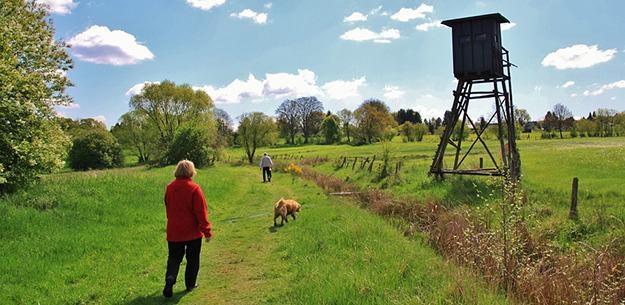 chasse promeneurs Français contre la chasse le dimanche
