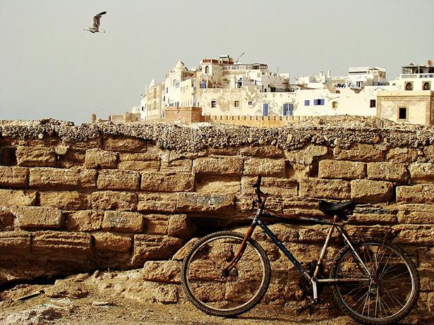 Maroc vélo Olmo COP22