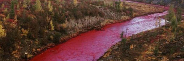 Une rivière russe devient rouge : l'usine proche accusée de pollution