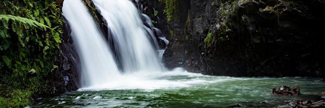 La Terre a perdu 10% de ses espaces sauvages depuis les années 1990