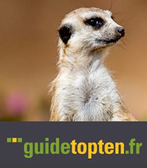 Guide Top Ten