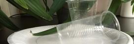 Environnement: la vaisselle jetable va devoir devenir biodégradable