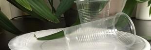 Environnement : la vaisselle jetable va devoir devenir biodégradable