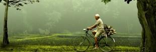 Découvrez le top 100 des destinations vertes