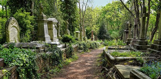 humusation cimetière enterrement écologique écoresponsable