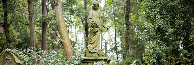 Mort et écologie: comment rester vert jusqu'au bout?