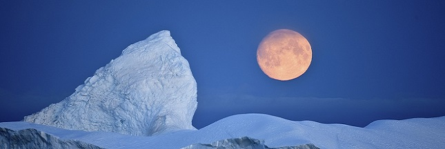 Antarctique : le plus grand sanctuaire marin du monde est créé