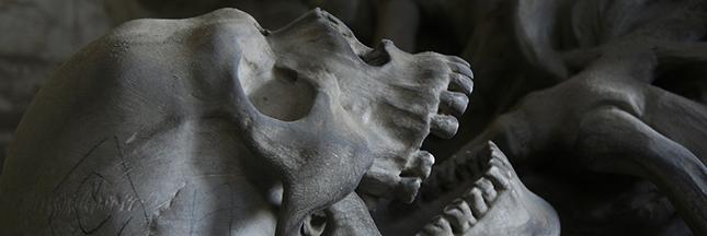 Oubliez l'immortalité : l'Homme ne pourrait pas vivre plus de 125 ans