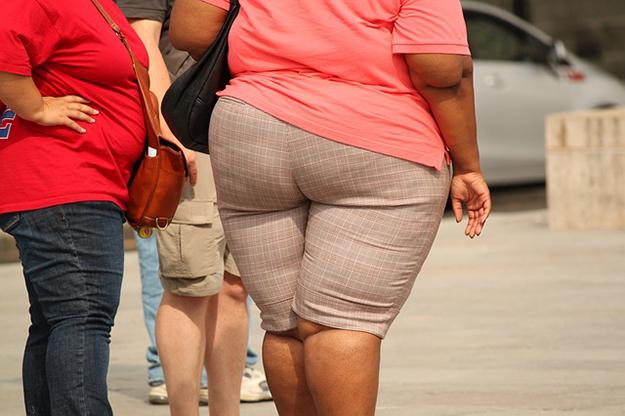 obèse, obésité, mutation génétique, mélanocortine