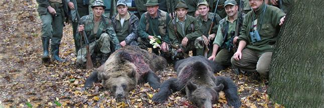 La Roumanie met un terme à la chasse 'sportive' des espèces en danger