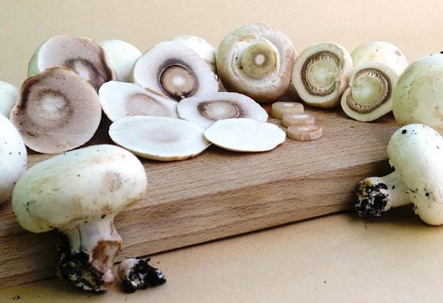 recette-bio-champignons-farcis