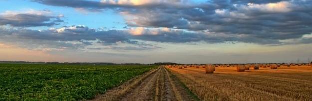 bio, agriculture, réglementation UE