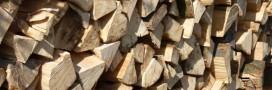 Quel bois de chauffage pour votre poêle?