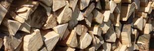 Quel bois de chauffage pour votre poêle ?