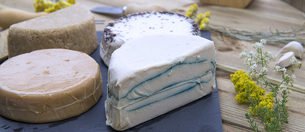 fromage végétal fauxmage vegan