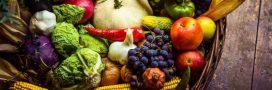 Cuisinez les légumes de saison en novembre: le panier AMAP