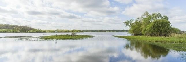La Loire-Atlantique, le département le plus écologique de France