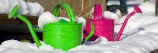 Comment protéger son jardin de l'hiver ?