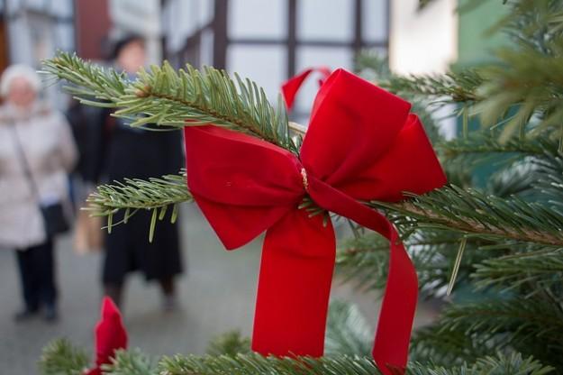 sapins de Noël, label rouge, branche de sapin, décoration de Noël