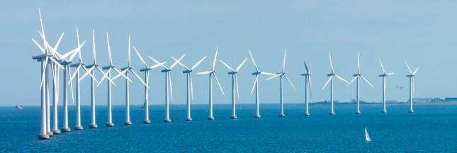 EDF : les parcs éoliens devront attendre