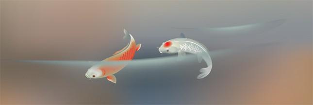 Japon: patiner sur des poissons congelés, non merci!