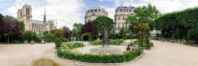 Les rats ont envahi Paris, la mairie prend des mesures drastiques