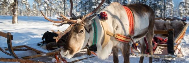 Reportage photos au pays du Père Noël