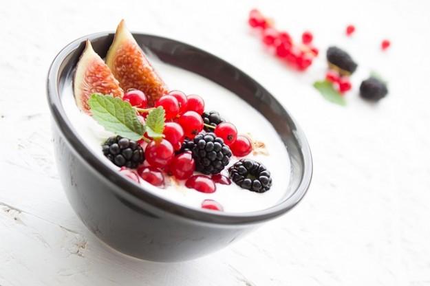 les ferments lactiques du yaourt