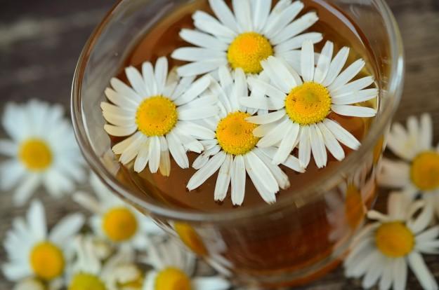 Kusmi tea, camomille, migraine
