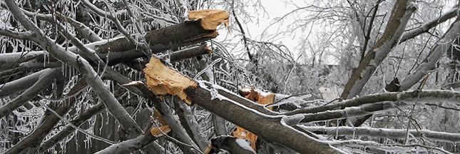 Météo: tempête Egon et vague de grand froid
