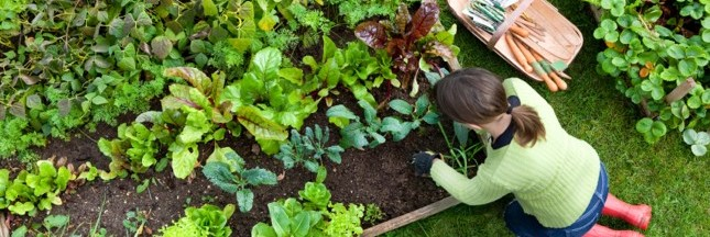5 bonnes raisons de se mettre au jardinage