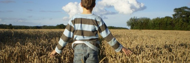 France: l'agriculture biologique gagne du terrain