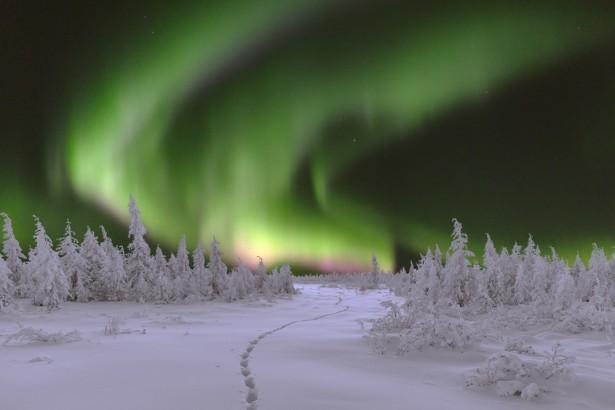 aurores boréale