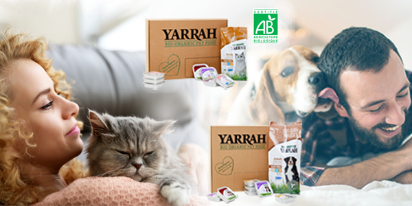 box Yarrah