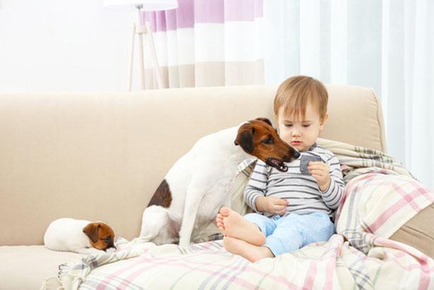 enfants-malvoyants-chien_shutterstock