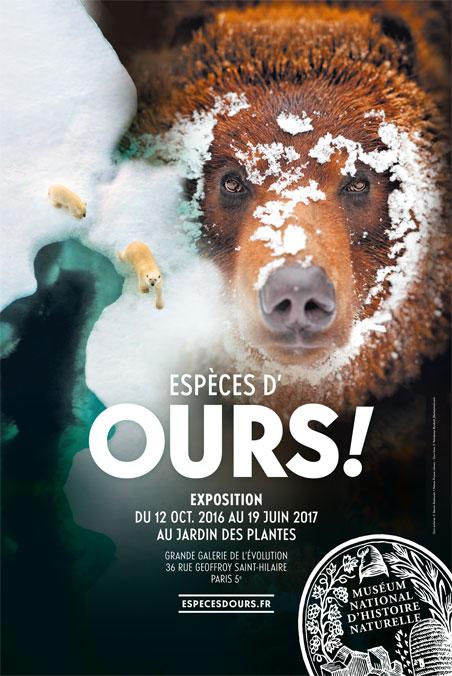 espèces d'ours!