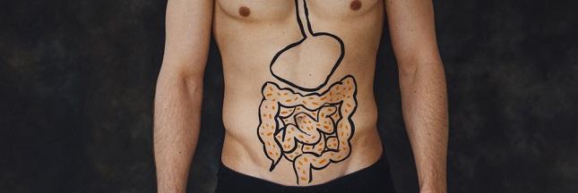 Comment les ferments lactiques agissent sur nos intestins ?