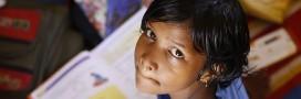 Scandale en Inde: des travaux scolaires pour apprendre comment étouffe un chaton