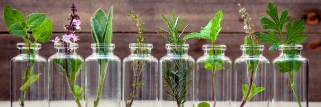 médecines douces, aromathérapie