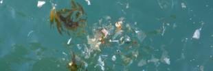 Les microparticules de plastique envahissent les océans