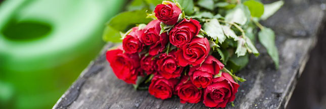 On veut des roses, pas des pesticides !