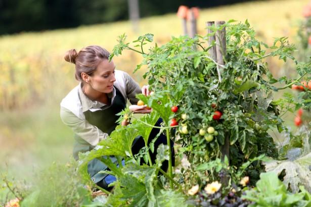 se mettre au jardinage, bien-être