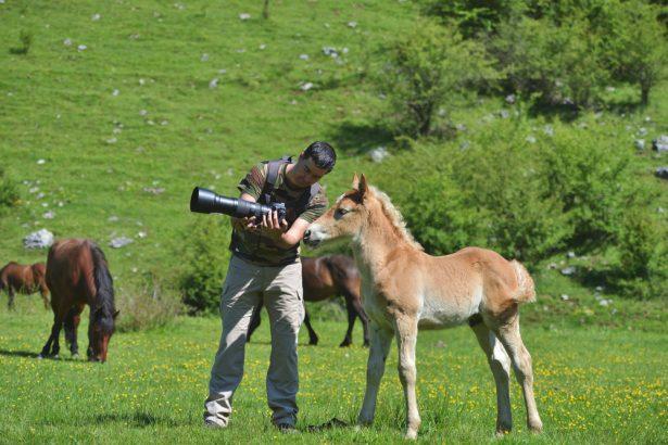 documentaire animalier